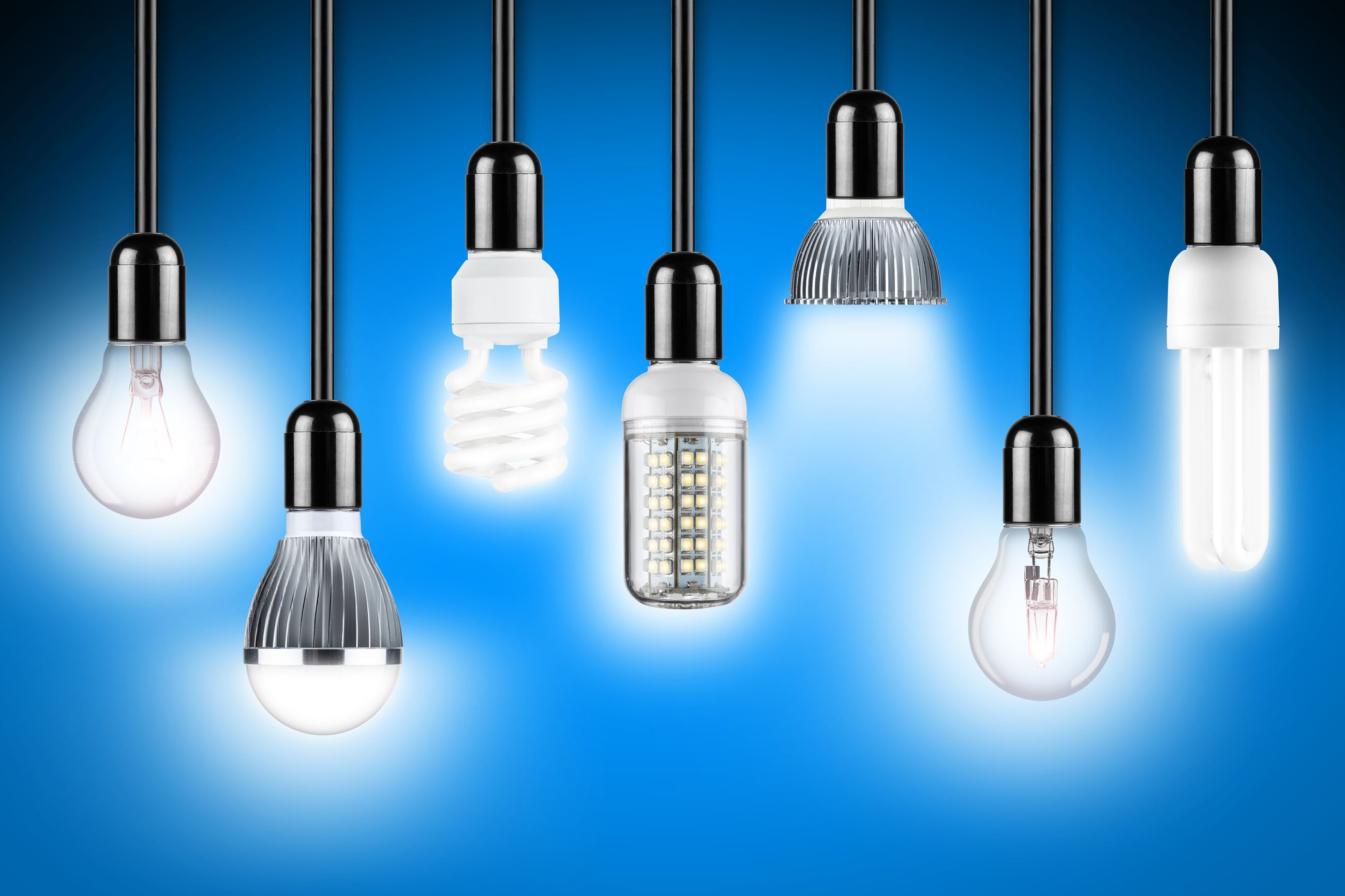 light led x bulb proportions lighting urbia of inside types bulbs ideas