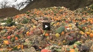 Composting Video